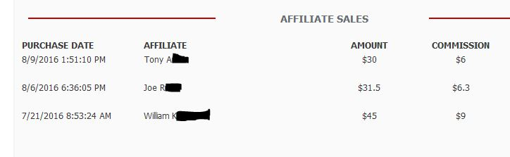 Affiliate Earnings2