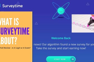 What is Surveytime about